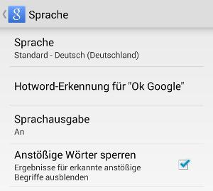okay google wetter de
