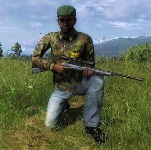 The Hunter Halbautomatische Gewehr .22 Plinkington